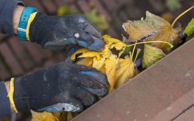 3 Reasons Why Your Gutters Are Overflowing and How To Fix It