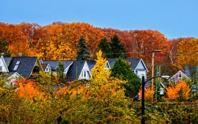 A Roofer's Guide to Seasonal Risks: Autumn