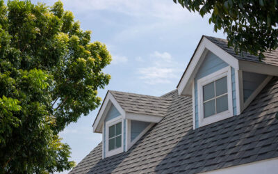 Spring Roof Check Up: How To Know if You Need To Replace Your Roof